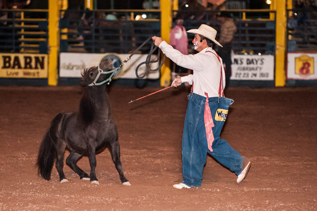 Navajo County Fair Rodeo -