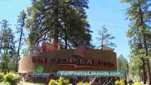 Pinetop-Lakeside AZ - It's time to Expect the Unexpected