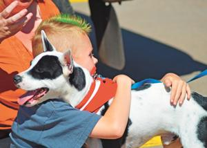 Hearts, hands and paws find each other at White Mountains Adopt-a-thon