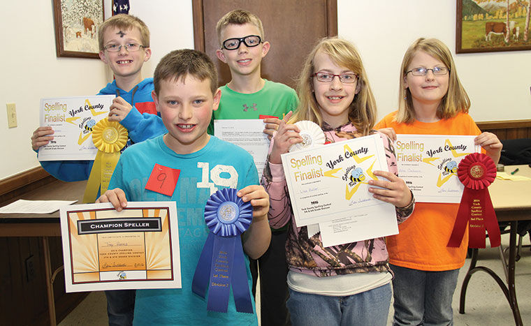 Spelling Bee News Yorknewstimes Com