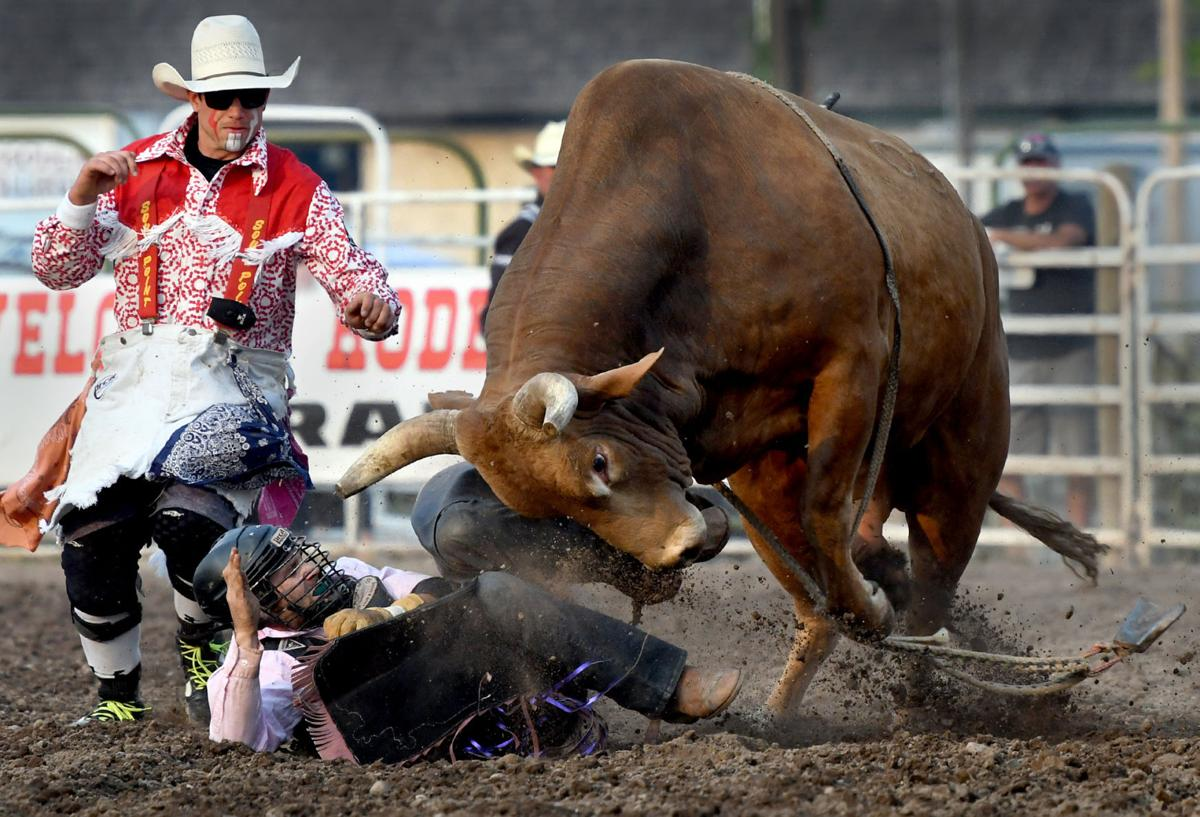 Chicken Little Brings Out Best In Utah Cowboy At Missoula