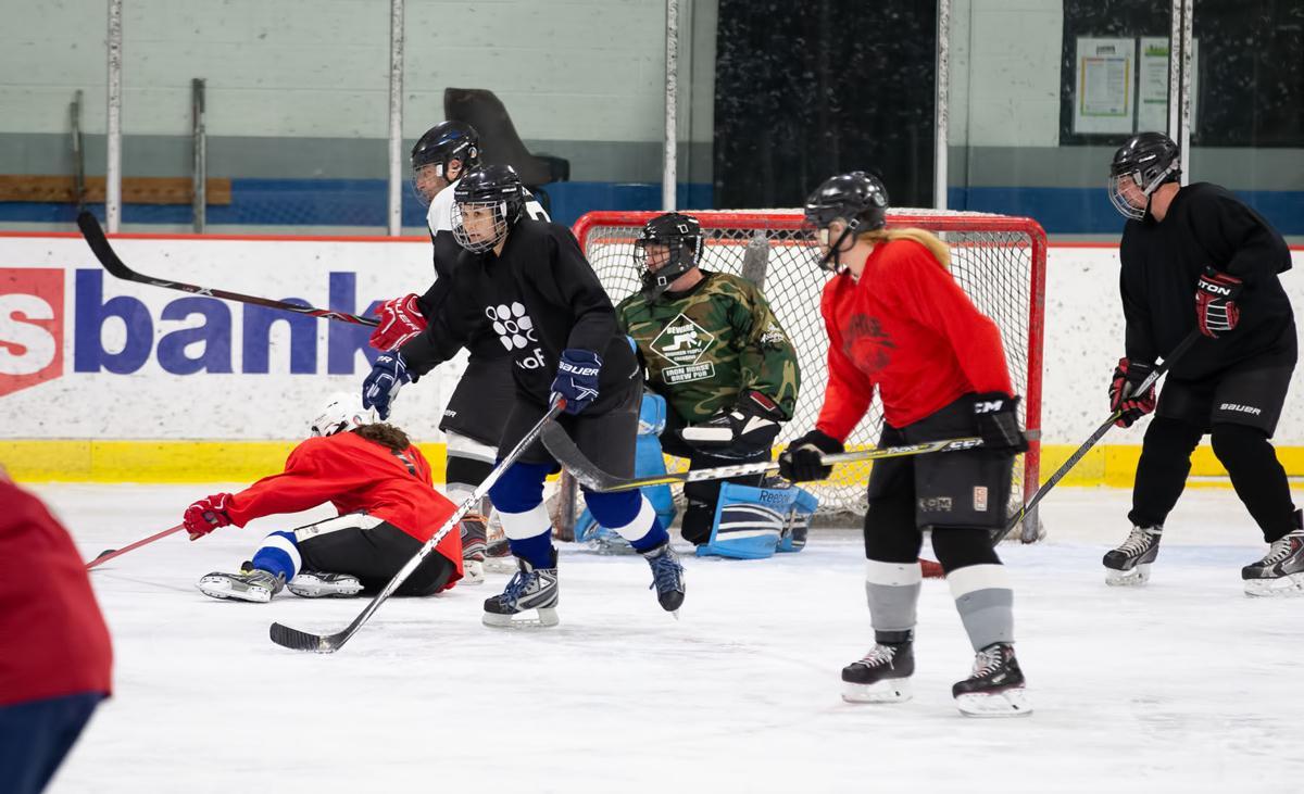Novice hockey