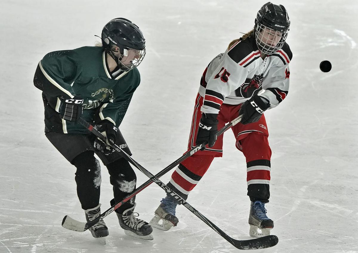 022319 hockey-2-tm.jpg