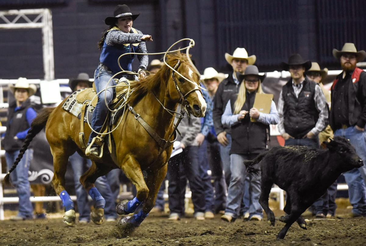 MSU Spring Rodeo, Day 2 (copy)