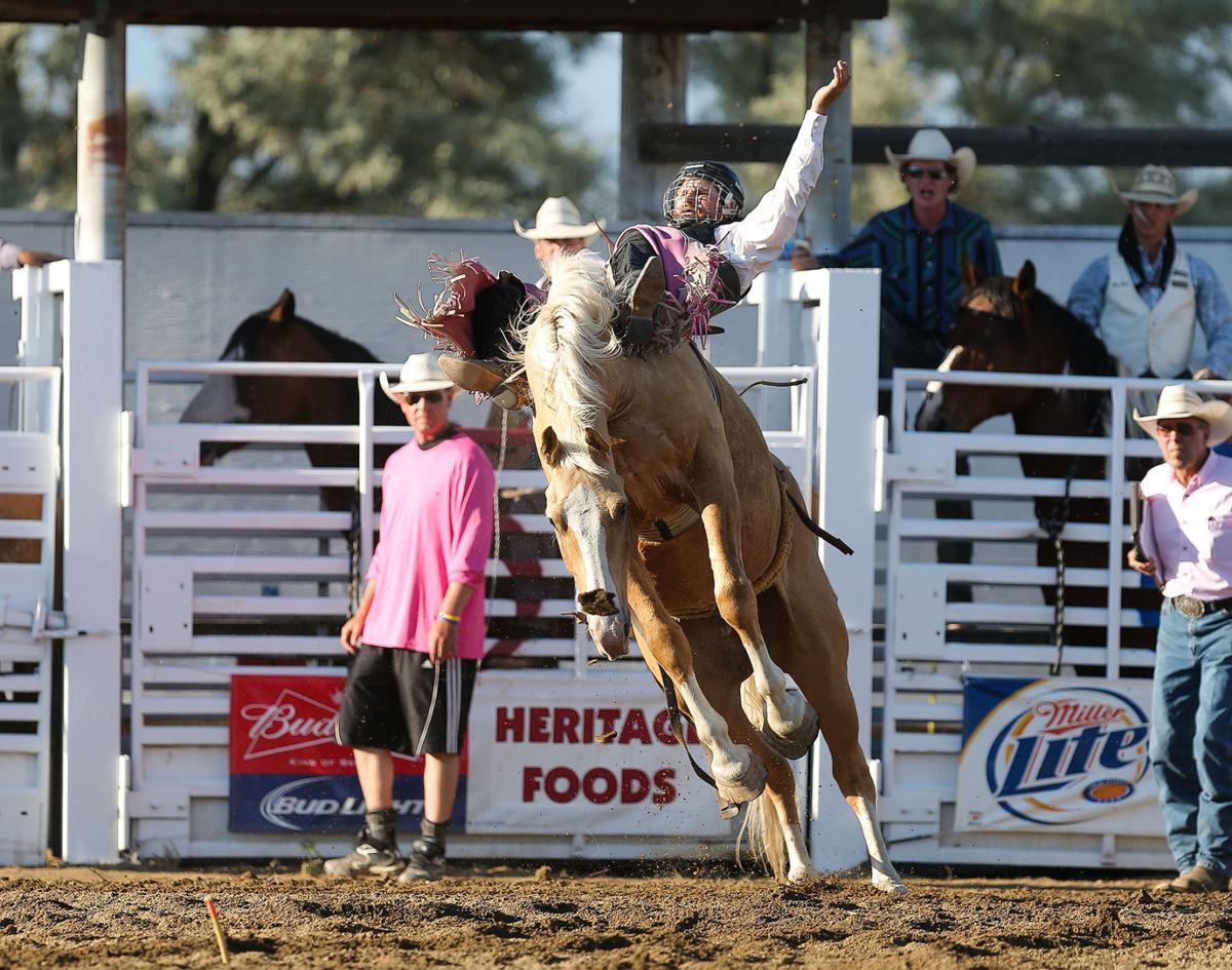 Dillon S J2 Bridges Posts Best Bareback Bronc Riding Score At East Helena Valley Rodeo