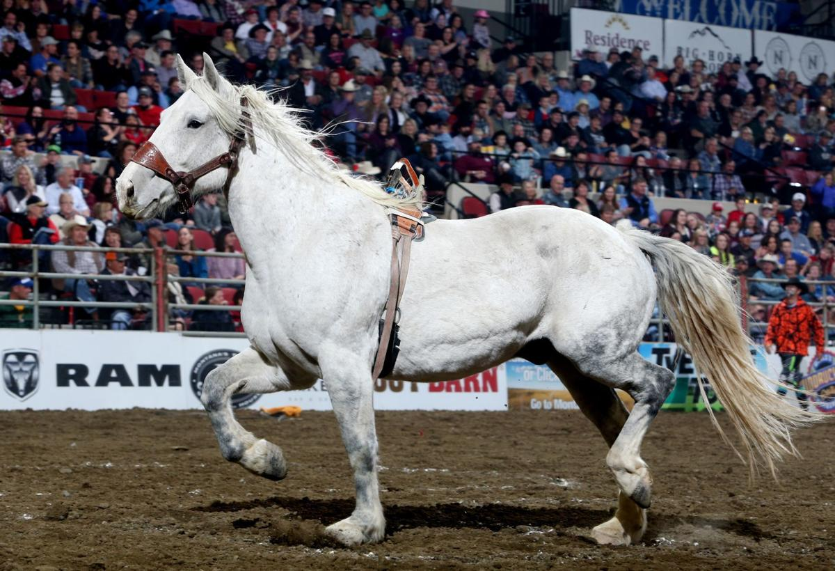 PRCA NILE rodeo