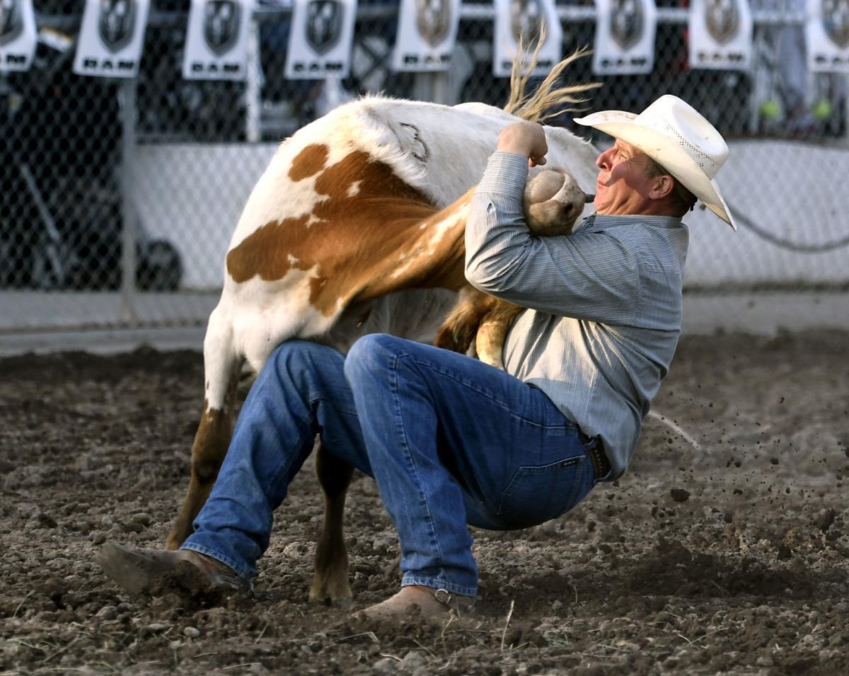 Fair Rodeo Hank Hollenbeck