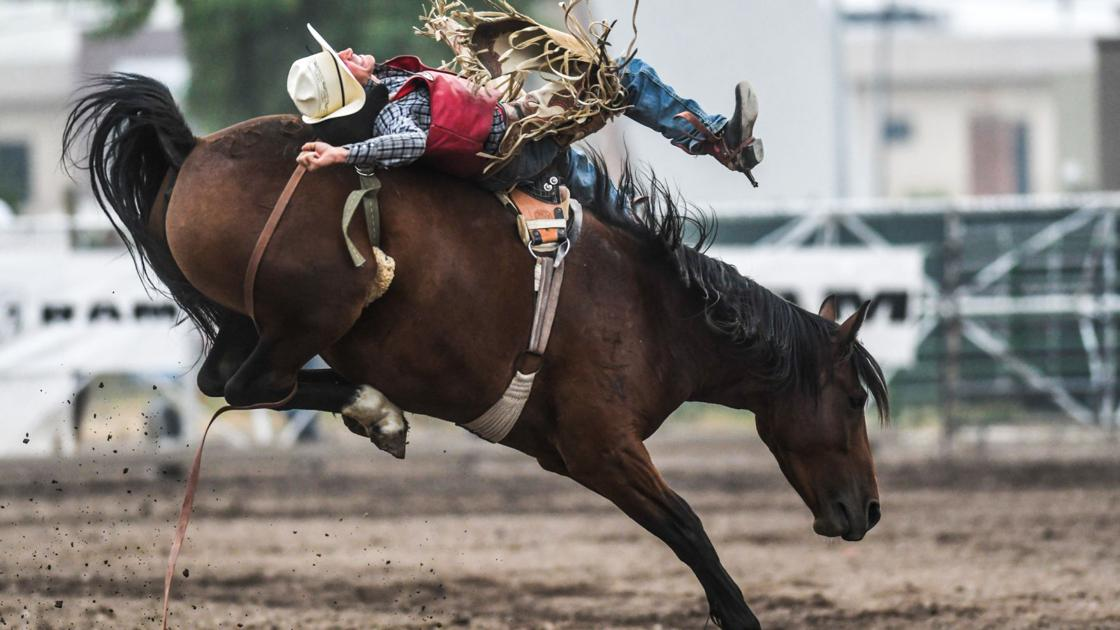 Florence Cowboy Seizes Bareback Lead At Smoky Missoula