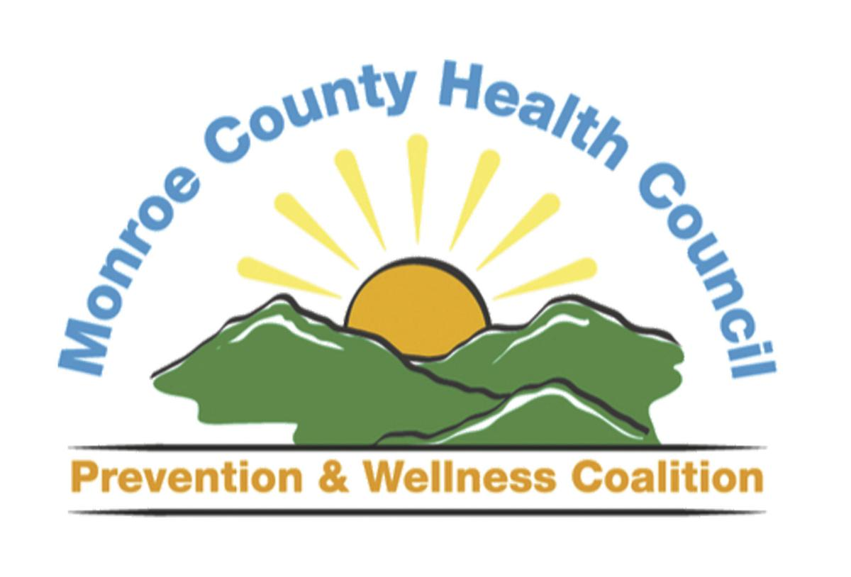 Health Council logo