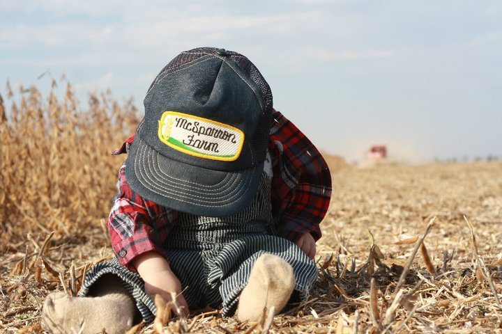 Hollister checking soybean loss