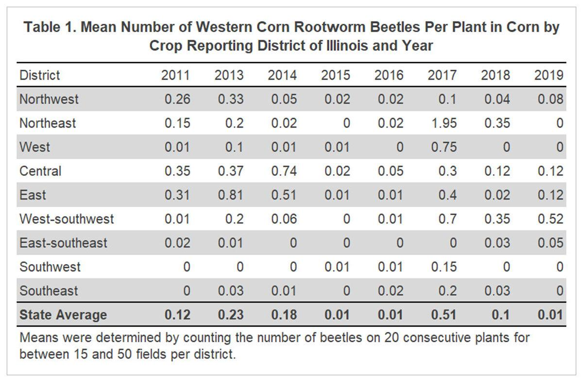 Corn root worm table