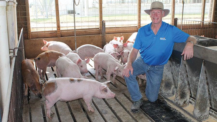 Cass County pig farmer Scott Phillips