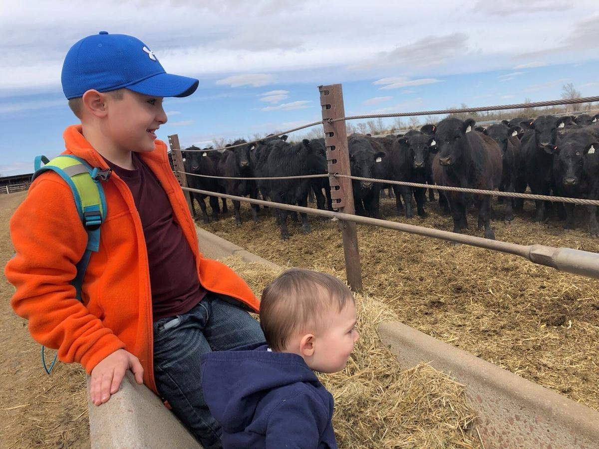 Koen & brother with cows.jfif