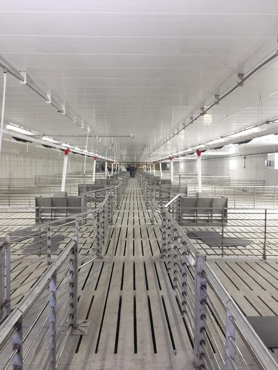 Fairview Colony Swine Finishing Facility