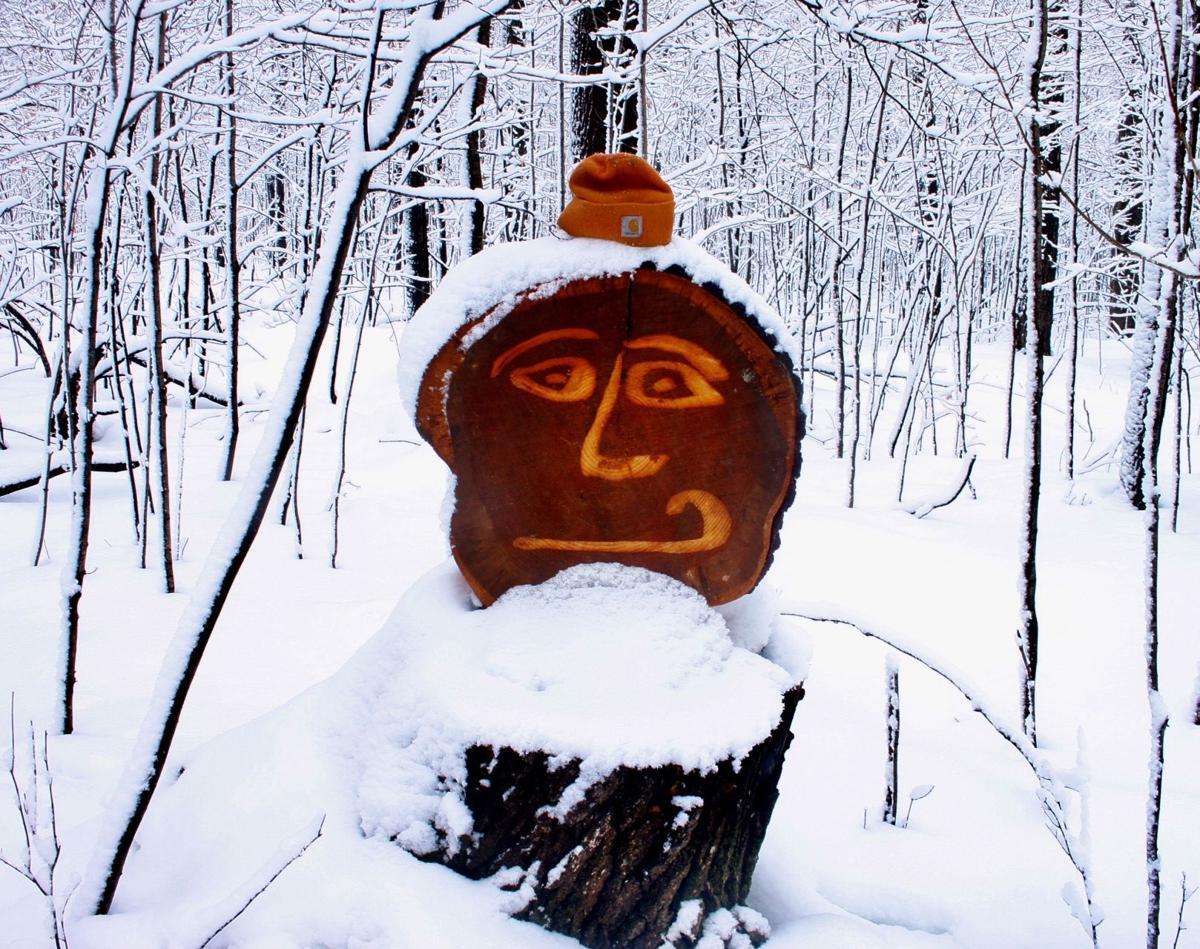 Face lives in woodlot