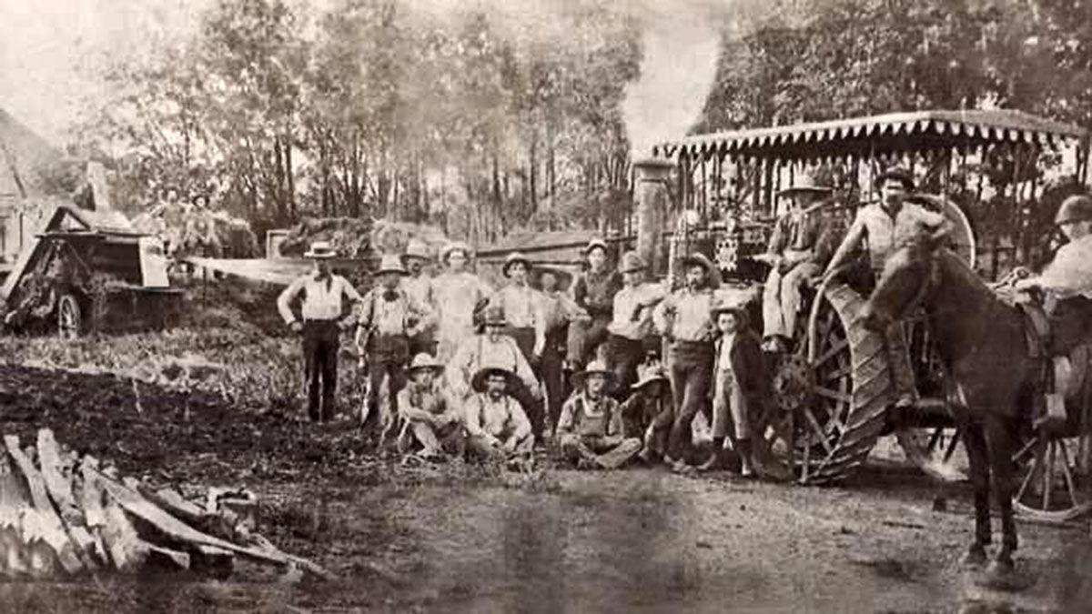 Toohill vintage threshing photo