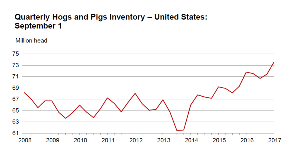 Hogs & Pigs Report; HRI Movers of the Week - YouTube