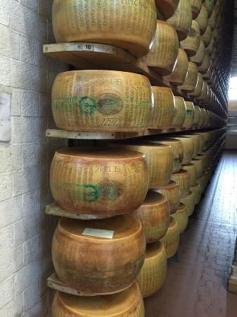 Cheddar barrels piled in storage