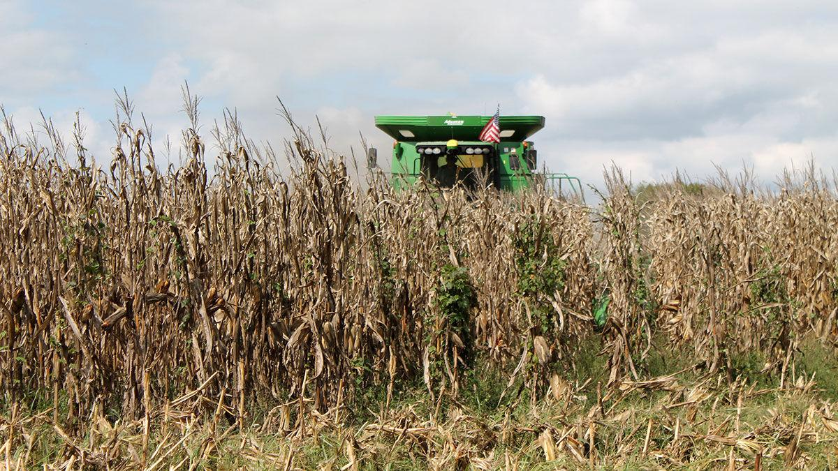 Combine with flag and corn harvest