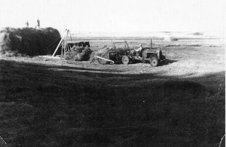 The Shoemaker farm