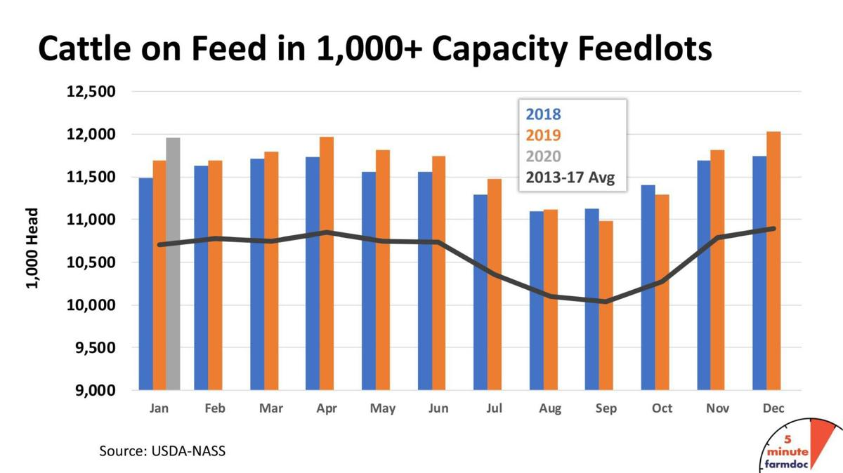 Cattle on Feed in 1,000-plus-capacity Feedlots
