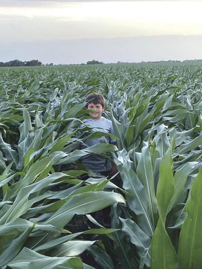 Parker Bischoff corn