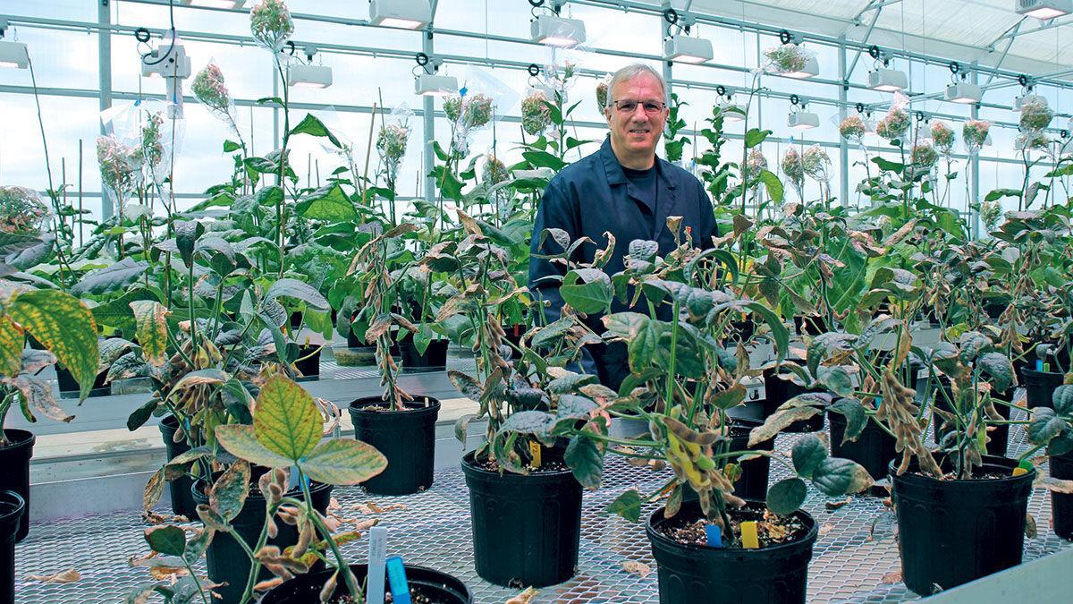 Brett Feddersen University of Illinois photosynthesis