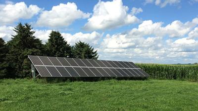 Solar panels on a beef cattle farm in NE Iowa.