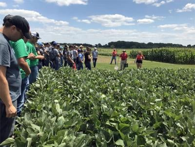 Youth Crop Scouting