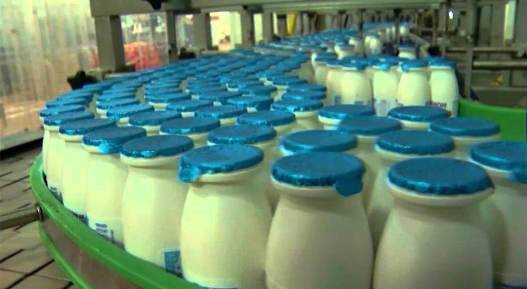 Milk bottles in processing plant