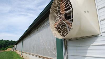 Hog barn ventilation