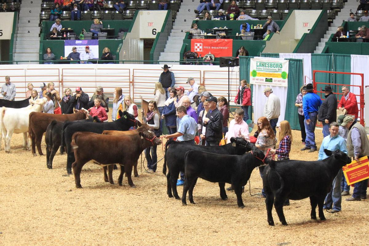 MN Beef Expo 1, 2016