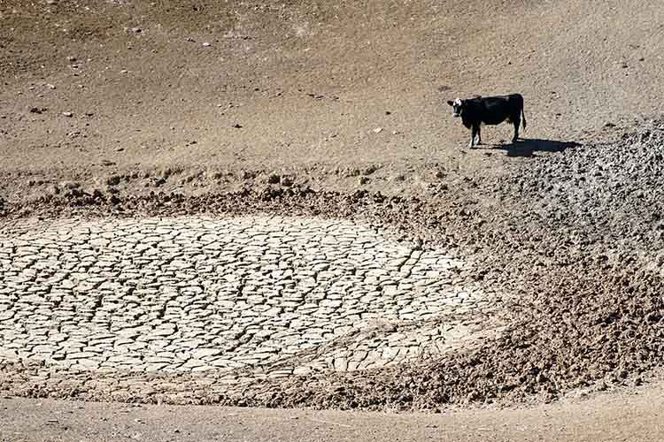 Drought monitor 1.jpg