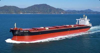Bulk ocean vessel (copy)