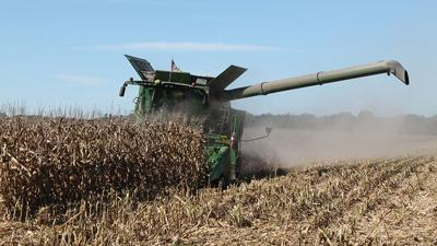Combine in corn filed