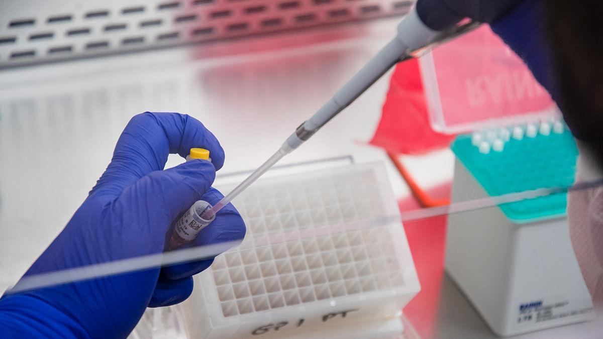 Iowa State University's Veterinary & Diagnostic Laboratory samples