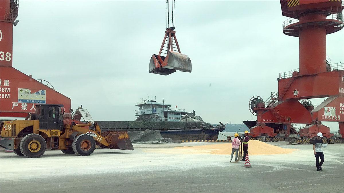 China grain market USGC dock photo