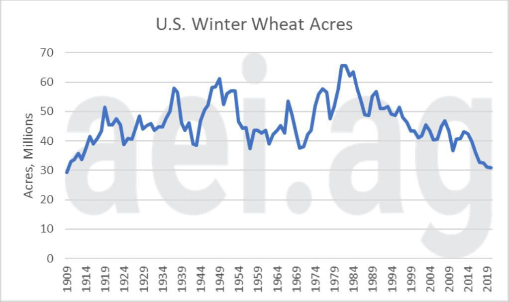 Figure 3. U.S. Winter Wheat Acres, 1909-2020. Data Source: USDA National Agricultural Statistics Service