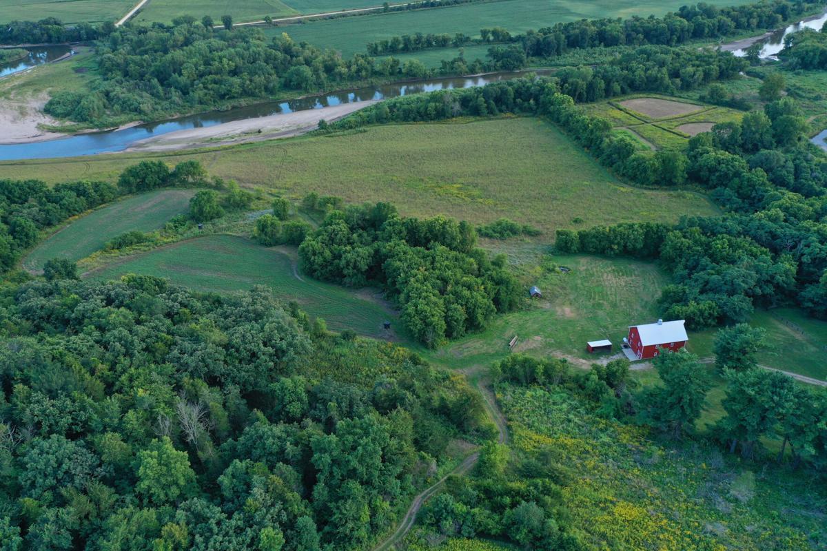 Farmland auction tips (3).jpg