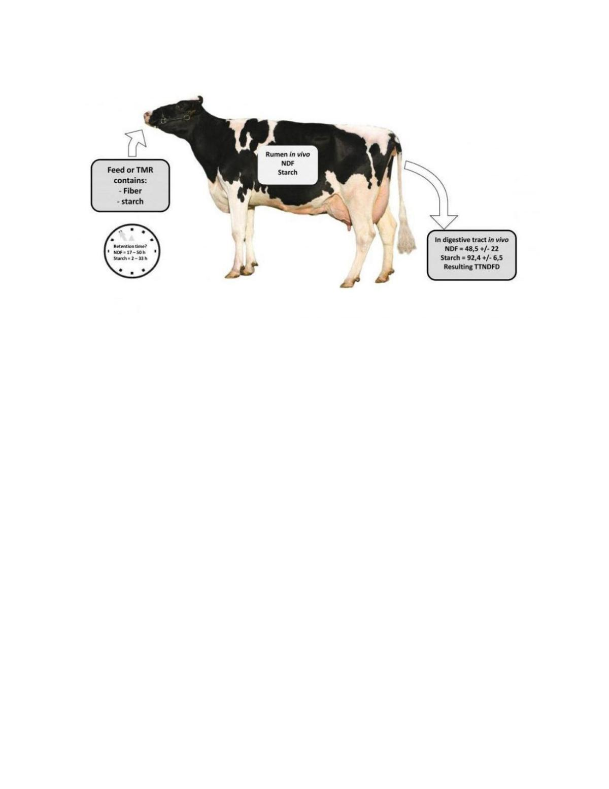 Cow diagram crops agupdate download pdf cow diagram ccuart Gallery