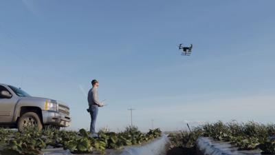 Need specific info over a large field area? Consider using a drone