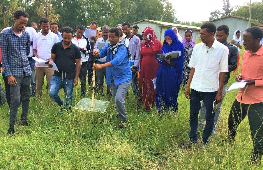 Ethiopian development agents use pasture plate