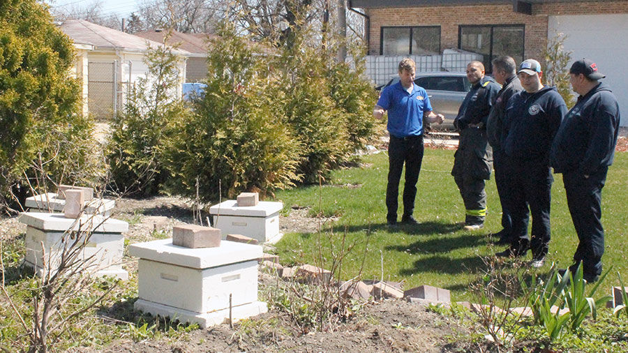 bee hives at Wild Blossom Meadery