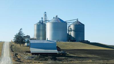 Stored Grain