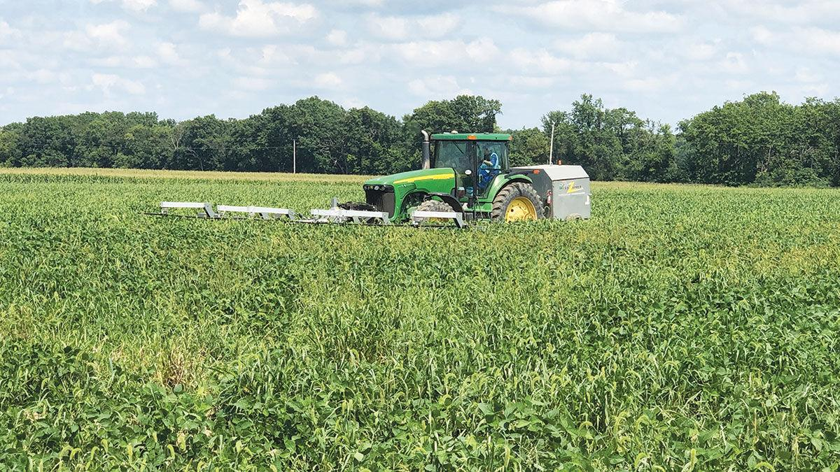 Weed Zapper electrocutes weeds in fields