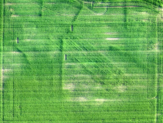RGB image of field