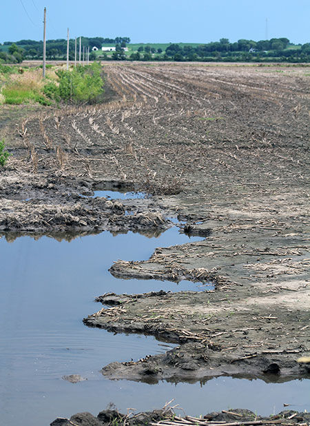 MO Flood damaged fields