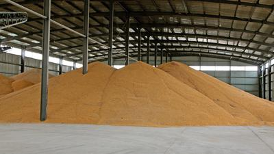 Corn in storage