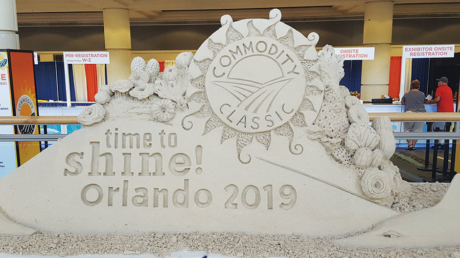 Commodity Classic Sand sculpture