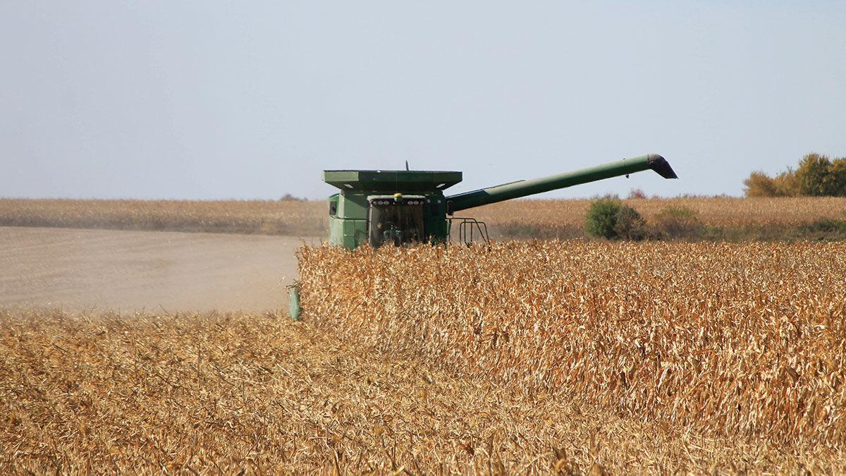 Northeast Iowa farmers